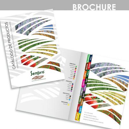 marleng lopera diseñadora gráfica - diseño brochure