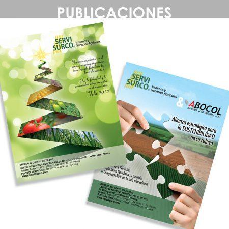 marleng lopera diseñadora gráfica - diseño publicaciones